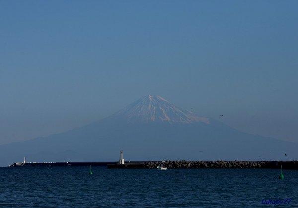 富士山1901ca57.jpg
